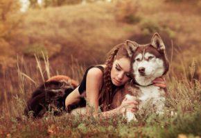 запор у домашних животных