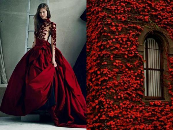 платье из роз