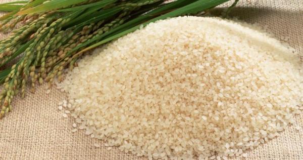 Белый рис для тренировок